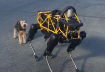 Dieser Roboter der Firma Boston Dynamics wird noch etwas misstrauisch vom Hund eines Mitarbeiters begutachtet. (Foto: flickr/ Steve Jurvetson)