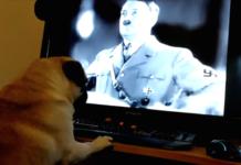 Hund Nazi-Gruß Adolf Hitler