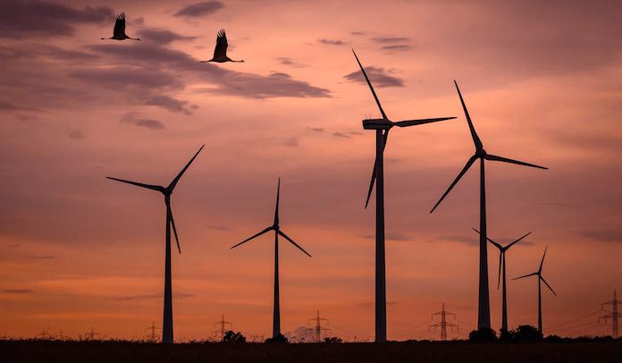 Deutsche Teilnahme Energiewende